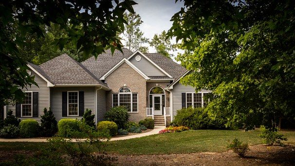 5 Tree Maintenance Tips to Protect Your Property
